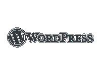 WordPress-julkaisujärjestelmä